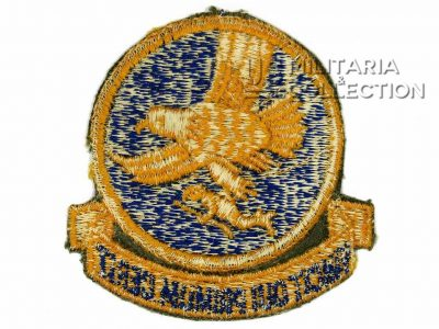 Insigne, 1st Troop Carrier Command